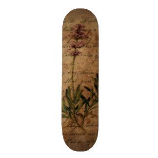 Vintage Lavender on Distressed Writing Paper Skateboards