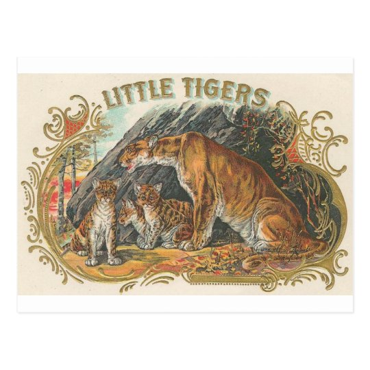 Vintage Little Tigers Postcard