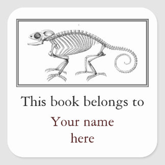 Vintage lizard skeleton bookplate square sticker