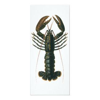 Vintage Lobster, Marine Ocean Life Invitation
