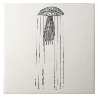 Vintage Long Armed Jellyfish Antique Jellyfishes Tile