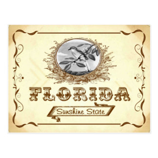 Vintage Look 1910 Florida Old Postcard