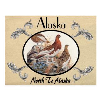 Vintage Look Old Postcard Alaska State