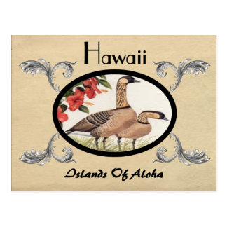 Vintage Look Old Postcard Hawaii State