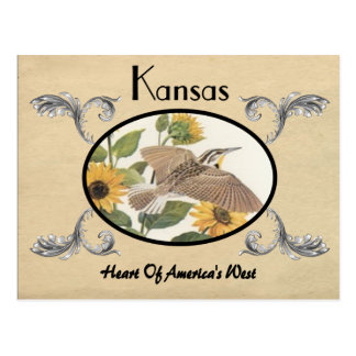 Vintage Look Old Postcard Kansas State