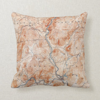 Vintage Luzerne New York Topographical Map Throw Pillow