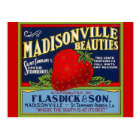 Vintage Madisonville LA Strawberry Crate Postcards