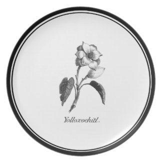 Vintage magnolia flower etching plate