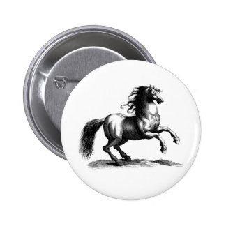 Vintage Majestic Horse Engraving 2 Inch Round Button