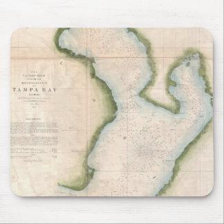 Vintage Map of Coastal Tampa Bay (1855) Mouse Pad