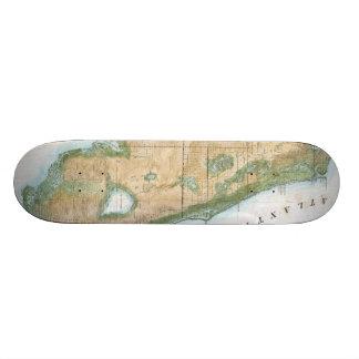 Vintage Map of Florida (1848) Skateboards