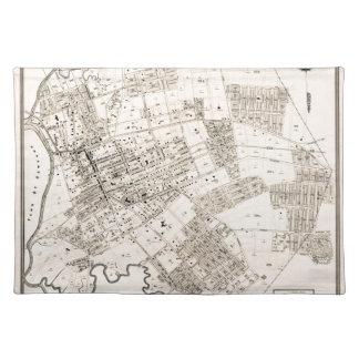 Vintage map of Flushing 1894 Placemat