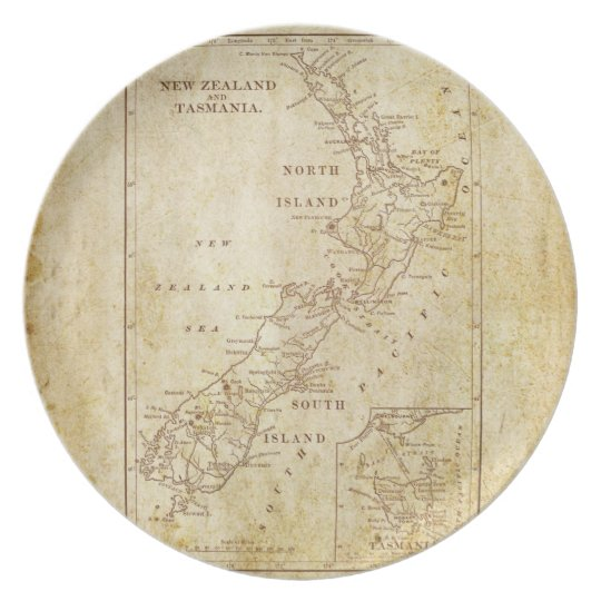 Vintage map of New Zealand c1879 Plate