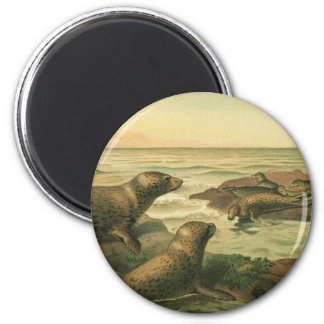 Vintage Marine Life Aquatic Animals, Leopard Seals 2 Inch Round Magnet