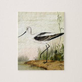 Vintage Marine Life Shorebirds, Avocet Birds Puzzle