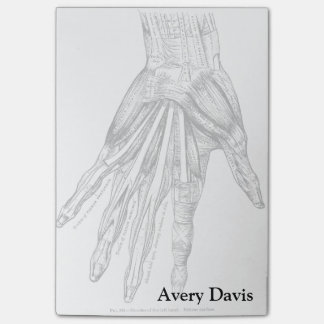 Vintage Medical Drawing Muscles of the Hand Post-It Note