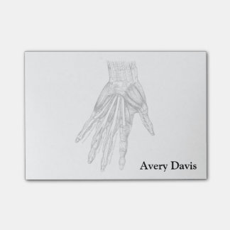 Vintage Medical Drawing Muscles of the Hand Post-It Notes