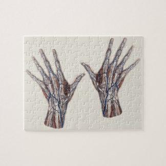 Vintage Medicine, Human Anatomy Hand Fingers Jigsaw Puzzle