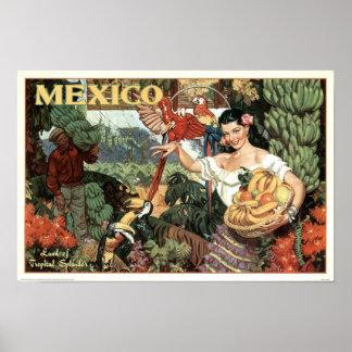 Vintage Mexico Land of Tropical Splendor Poster