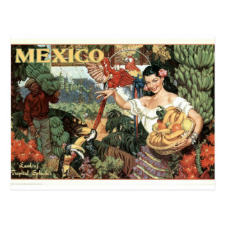 Vintage Mexico Poster Postcard