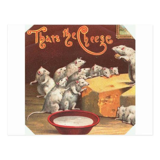 Vintage Mice and Cheese Postcard