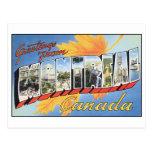 Vintage Montreal Postcard