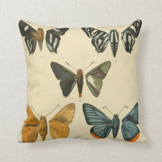 Vintage Moth Illustrations Throw Pillow