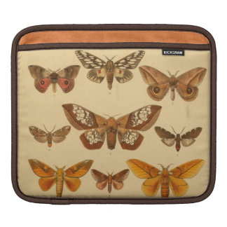 vintage moths iPad sleeves