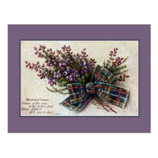 Vintage Mountain Heath Scottish clan ribbon, poem Postcard