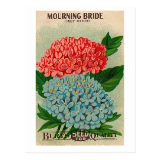 vintage mourning bridge flower seedpacket postcard