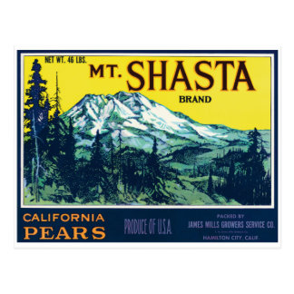 Vintage Mt Shasta California Pears Label Postcard