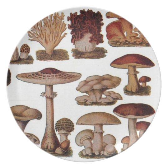 Vintage Mushroom Dinner Plate