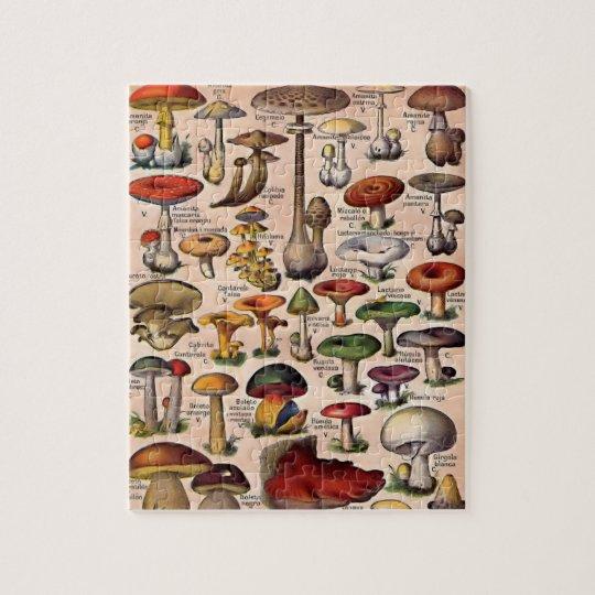 Vintage Mushroom Guide Jigsaw Puzzle