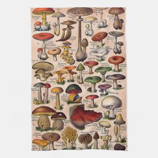 Vintage Mushroom Guide Kitchen Towel