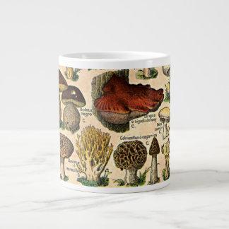 Vintage Mushroom Guide Specialty Mugs