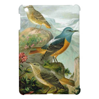 Vintage Nature Print Common Rock Thrush 1905 iPad Mini Cases
