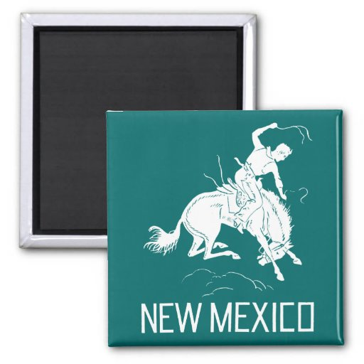 Vintage New Mexico Magnets