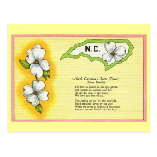 Vintage North Carolina State flower, poem Postcard