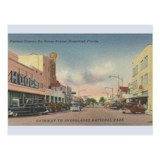 Vintage North Krome Avenue Homestead FL Postcard