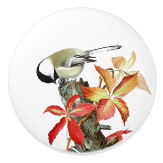Vintage Nuthatch Bird Wildlife Animal Knob