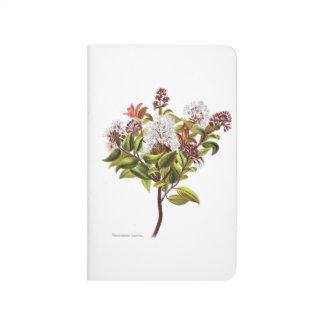 Vintage NZ Flowers - Meterosideros Albiflora Journal