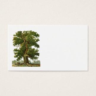 Vintage Oak Tree Business Card