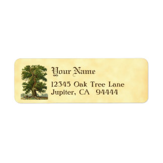 Vintage Oak Tree Custom Return Address Labels