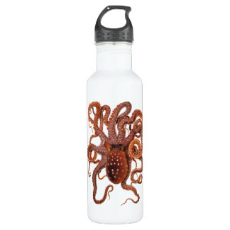 Vintage Octopus Macropus, Marine Aquatic Animals 710 Ml Water Bottle