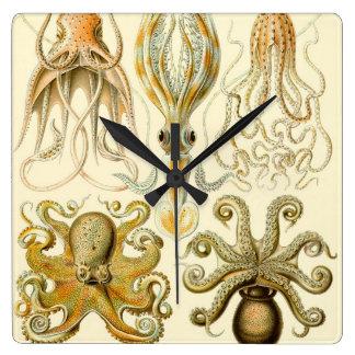 Vintage Octopus Squid Gamochonia by Ernst Haeckel Clocks