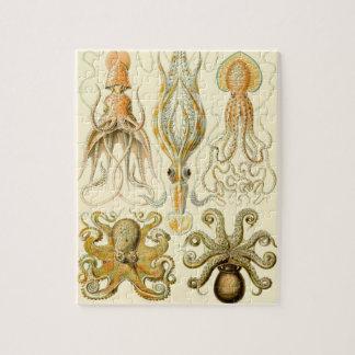 Vintage Octopus Squid Gamochonia by Ernst Haeckel Puzzle
