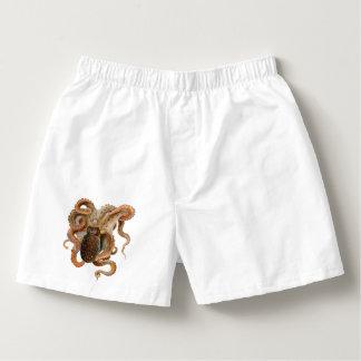Vintage Octopus Vulgaris, Marine Life Animals Boxers