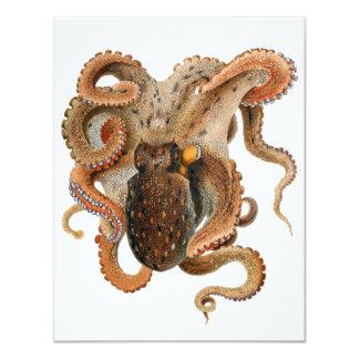 Vintage Octopus Vulgaris, Marine Life Animals Card