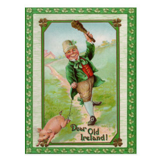 Vintage Old Dear Ireland Card