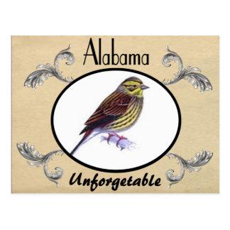 Vintage Old Postcard Alabama State